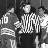 The Ned Fellers EHL Linesman and IHL Official Photo Album